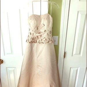 Dresses & Skirts - Donna Gray Champagne Evening Gown